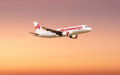 Animawings - Airbus A320